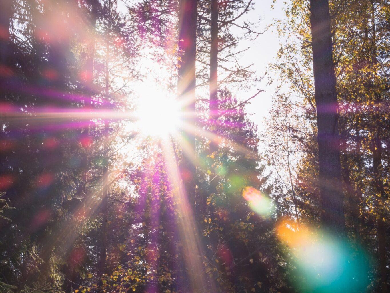 Spiritualiser la matière un travail personnel